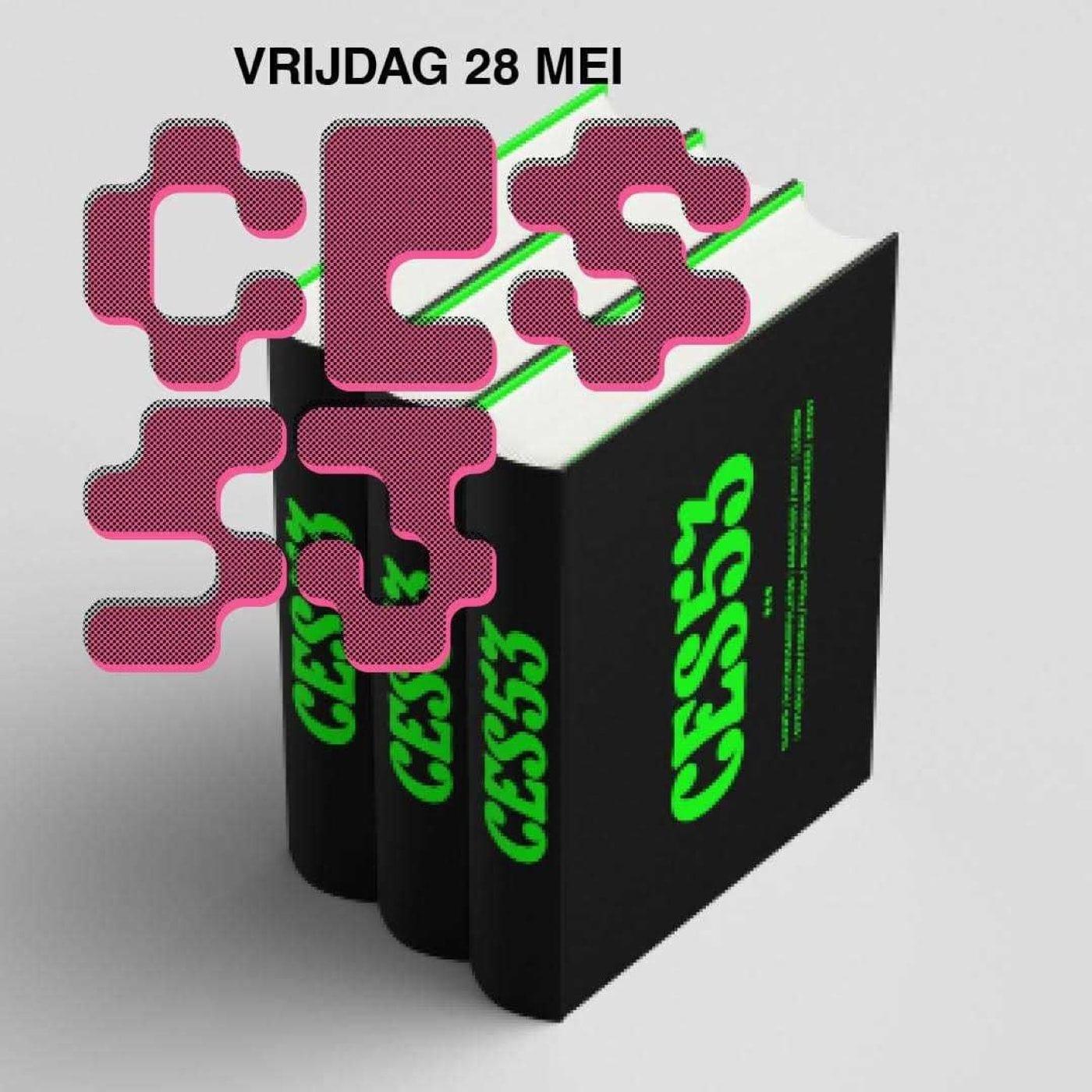 Kladmuur - Ces53
